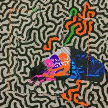 Animal Collective が Coral Morphologic とコラボした新作『Tangerine Reef』を 8/17 リリース!