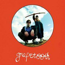 Twin Peaks のメンバーによる新プロジェクト、Grapetooth がデビューアルバムを 11/9 リリース!