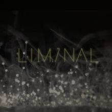 Sigur Rós がアンビエント・プロジェクトの第二弾『Liminal 2』を配信リリース!