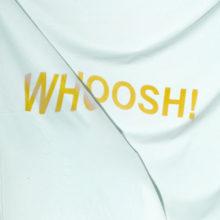 オーストラリアのスーパーバンド The Stroppies、デビューアルバム『Whoosh』を Tough Love から 3/1 リリース!