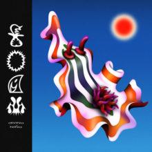 シカゴのサイケポップ・バンド Divino Niño がニューアルバム『Foam』を 6/21 リリース!