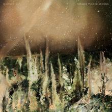 シカゴのフォークロック・バンド Whitney、待望のセカンドアルバム『Forever Turned Around』を 8/30 リリース!