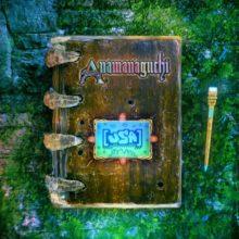 Anamanaguchi、6年ぶりのニューアルバム『[USA]』を Polyvinyl から 10/25 リリース!