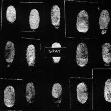 """バスキアが生前に結成した伝説のバンド """"GRAY""""、廃盤となっていたアンソロジー盤『Shades Of…』の完全版がリイシュー!"""