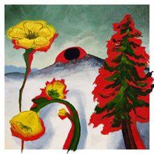 ブルックリンのフォークロック・バンド WOODS、ニューアルバム『Strange To Explain』を 5/22 リリース!