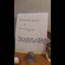 LAのインディーポップ・トリオ Smallpools が morgxn とコラボした新曲「slowdown」のMV公開!