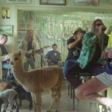 バイロンベイのガレージロック・トリオ Skegss、ニューシングル「Fantasising」をリリース!