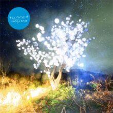 ドイツ・シーンを代表するバンド The Notwist、7年ぶりのニューアルバム『Vertigo Days』を 1/30 リリース!