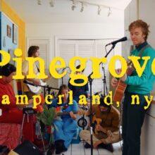Pinegrove、キャリアとカタログを網羅したアルバム『Amperland, NY』を 2/26 リリース!